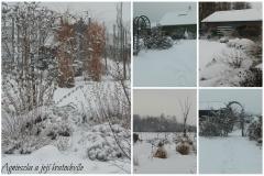 Lednová zahrada_2