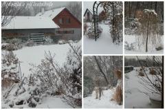 Lednová zahrada_4