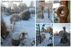 Lednová zahrada_7