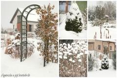Skoro lednová zahrada2