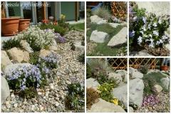 Zahrada konec dubna5