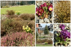 Zahrada začátkem dubna 2015c