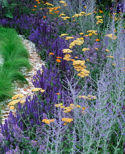 via https://www.gardenia.net/garden/a-perfect-summer-border-idea-with-achillea-salvia-and-perovskia