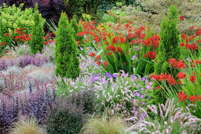 via https://www.gardenia.net/garden/a-Wonderful-summer-border-idea-with-Easy-to-Grow-Plants