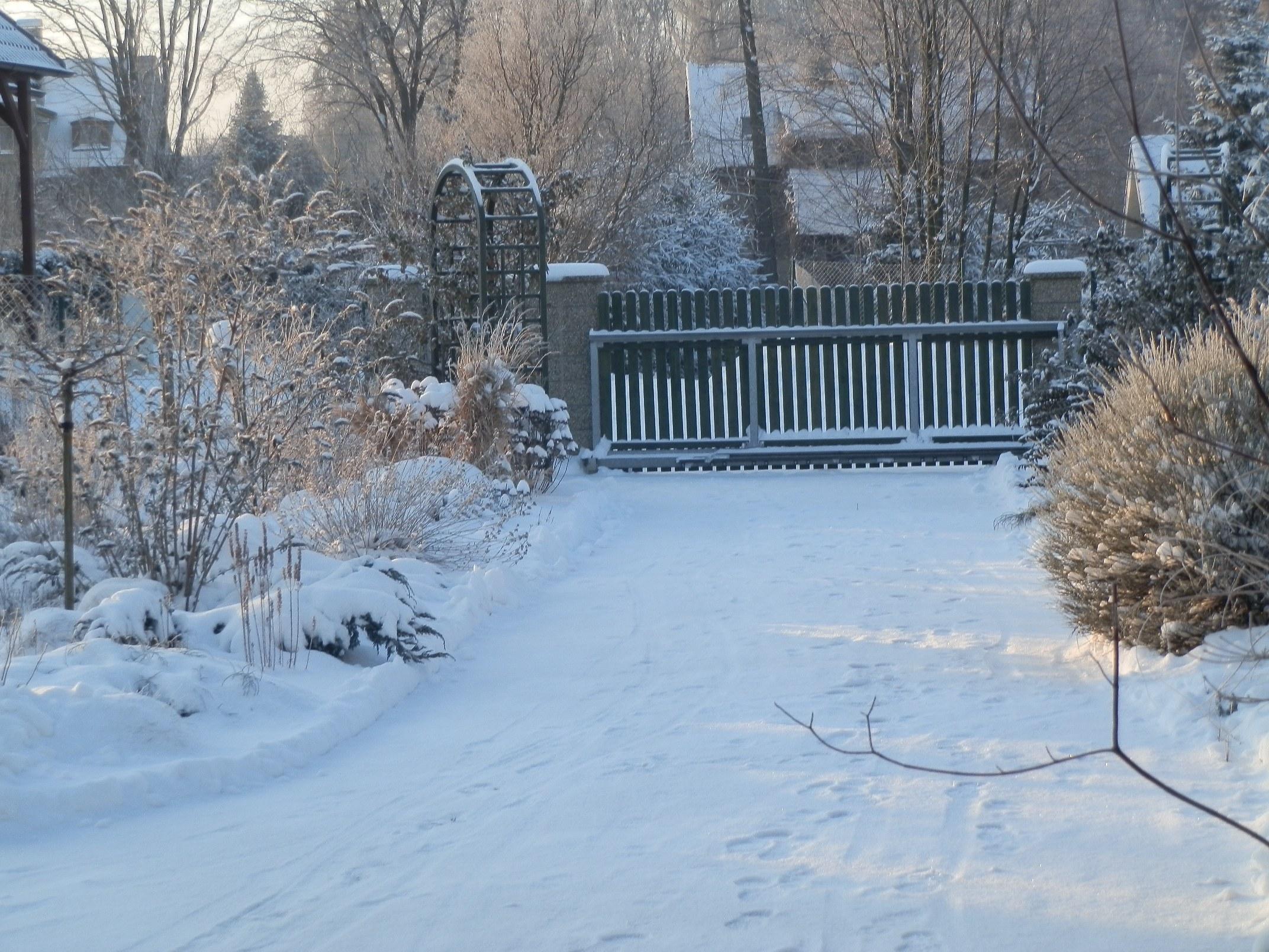 I zimní zahrada má své kouzlo.