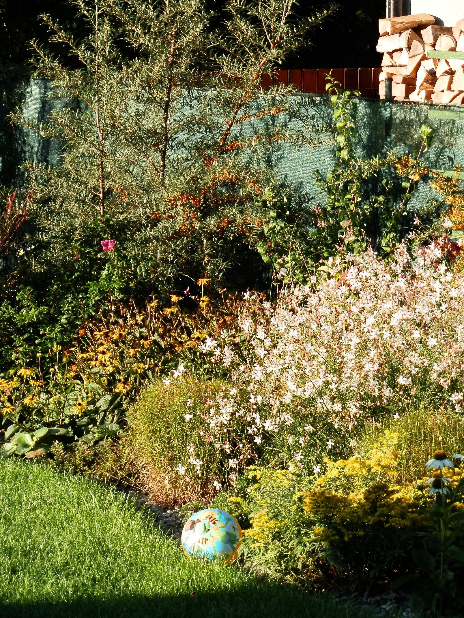 Časně říjnová zahrada. Dobře navržená zahrada pamatuje i na toto období.
