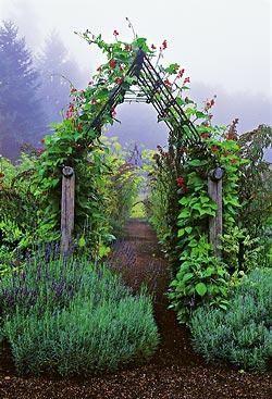 via http://thegardeningcook.com/garden-arbors/