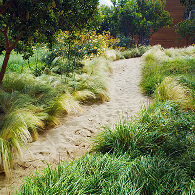 via http://www.sunset.com/garden/backyard-projects/great-garden-paths-photos/sandy-garden-path