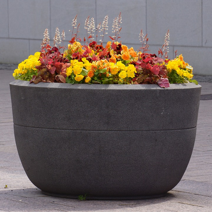 concrete-pot-123744_960_720
