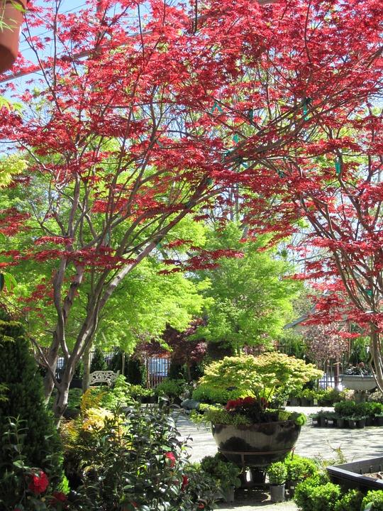 gardens-70851_960_720