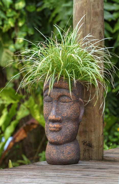 pot-head-213148_960_720