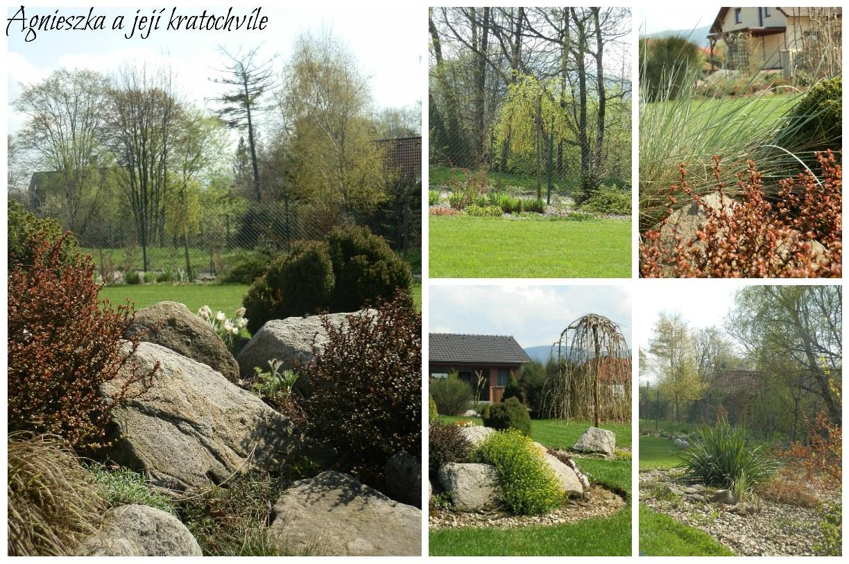 Zahrada polovina dubna 2016_4