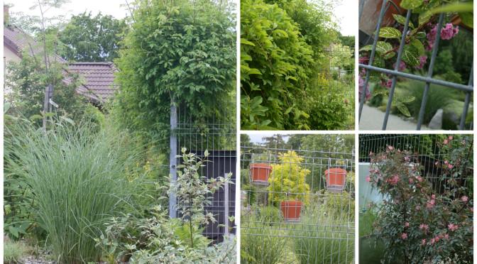 Jak v zahradě potlačit, co má být očím více skryto?