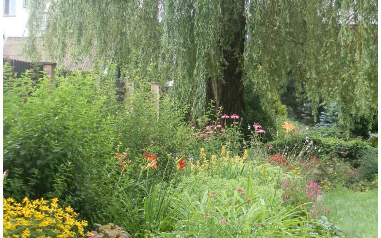 Proměna této staré zahrady…