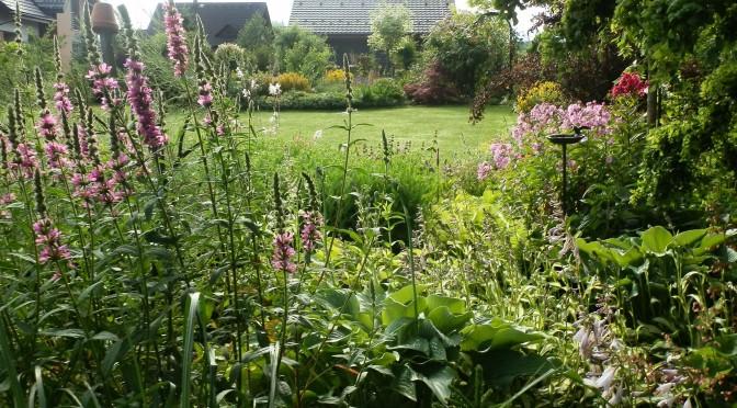 Co udělá zahradu zajímavější?
