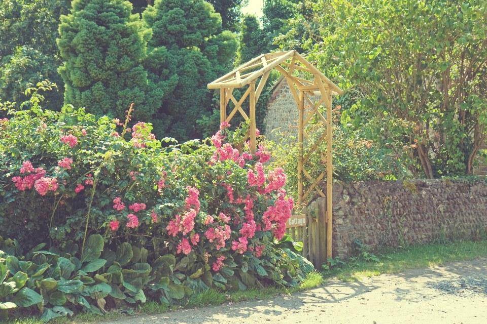 cottage-garden-vintage-colors