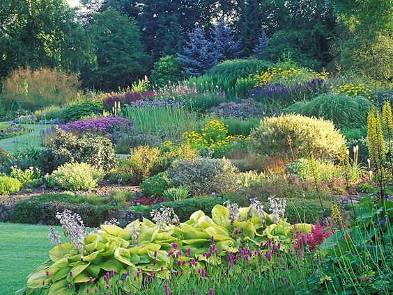 View of the Dell Garden, Bressingham, July, Summer, Perennials, shrubs, grasses and alpines in mixed borders and island beds. Designed by Alan Bloom.