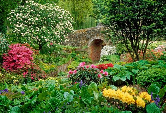 The Dell Garden, Bressingham, Norfolk - View of flint bridge built by Alan Bloom with mixed borders with perennials, shrubs and bulbs either side