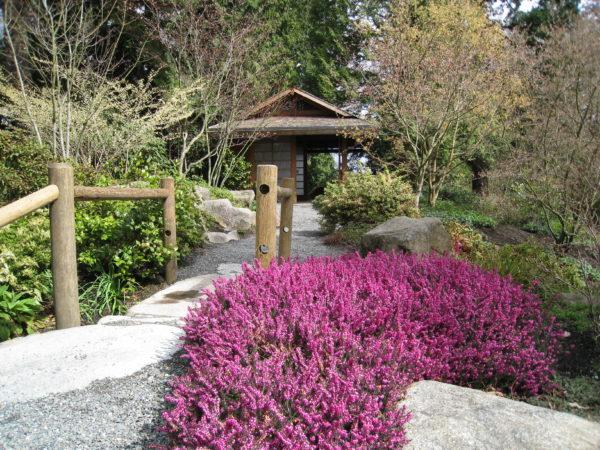 Bellevue_Botanical_Garden_Bridge