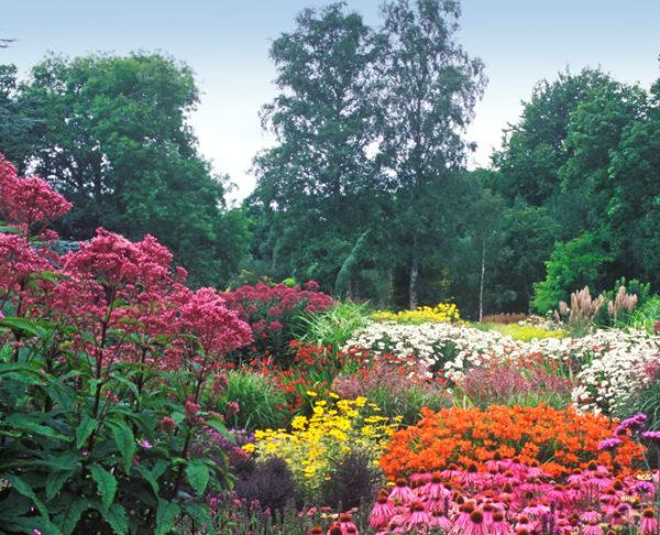 bressingham-summer-garden