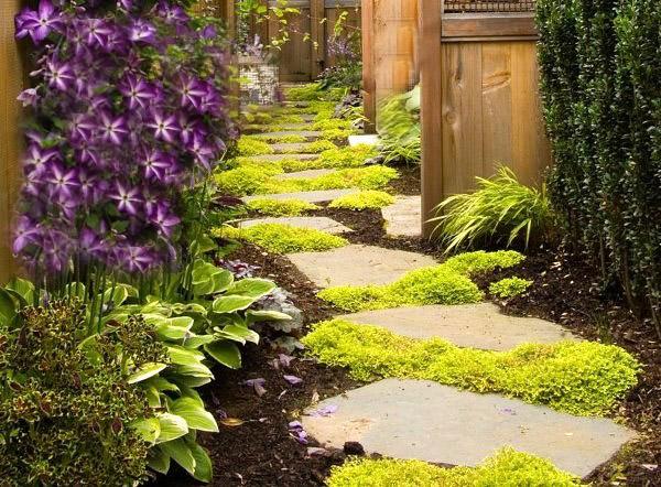 Garden-Footpath2