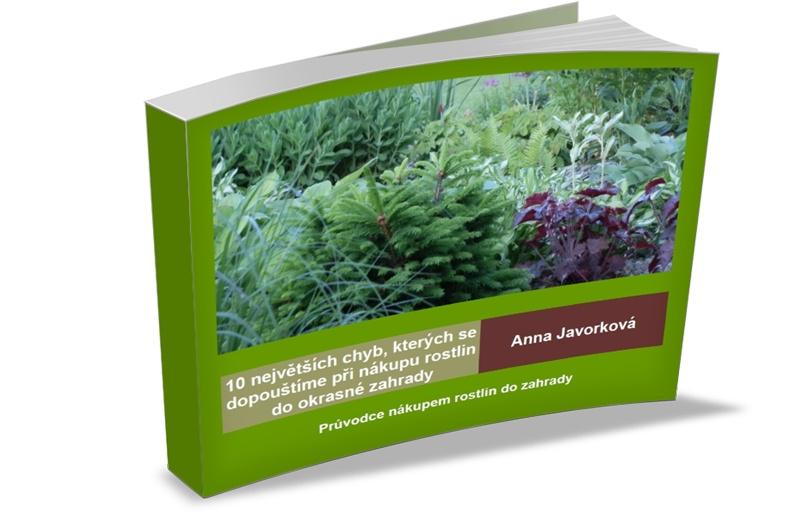 paperbacklandscape_800x525_tipy k nákupu rostlin_bílé pozadí