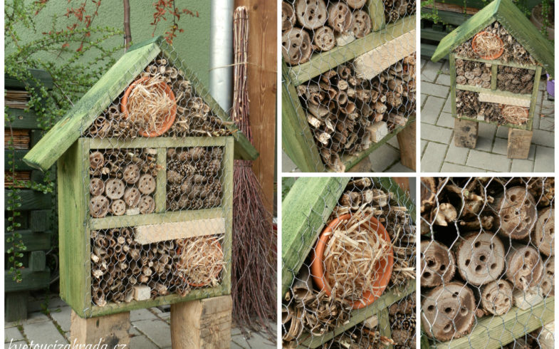 Hmyzí domeček v naší kvetoucí zahradě