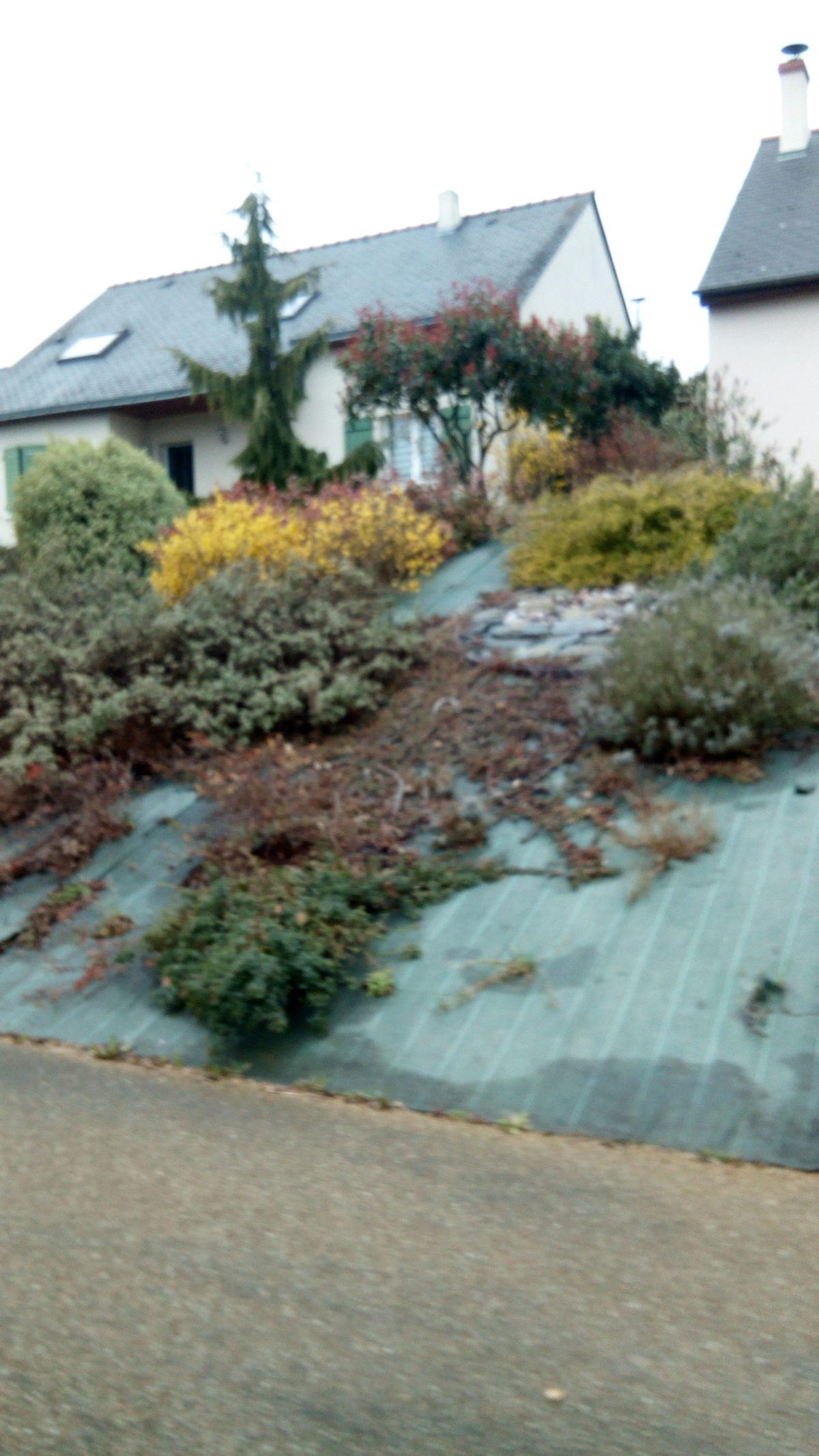 """""""Bezúdržbové"""" zahrady a mulčovací textilie – jak to spolu souvisí?"""