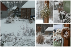 Lednová zahrada_3