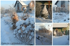 Lednová zahrada_5