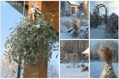 Lednová zahrada_8