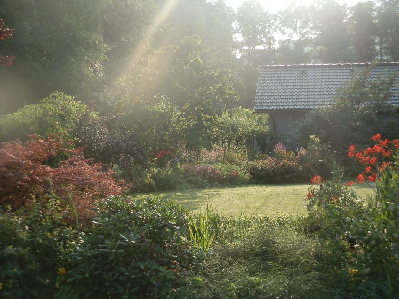 Vyzkoušejte 10 tipů, jak vytvořit zahradu, která vás bude bavit od jara do zimy