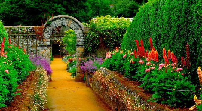 Kvetoucí zahrada odjinud