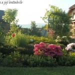 Ranní procházka pozdně květnovou zahradou…