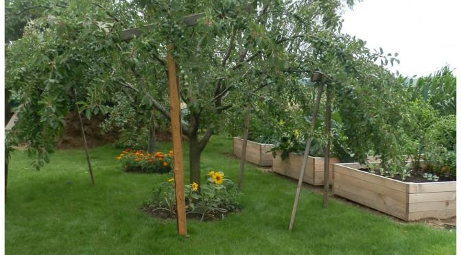 Zahrada s užitkovou částí…