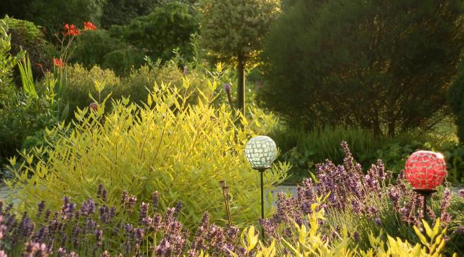 Kvetoucí zahrada v druhé polovině července…