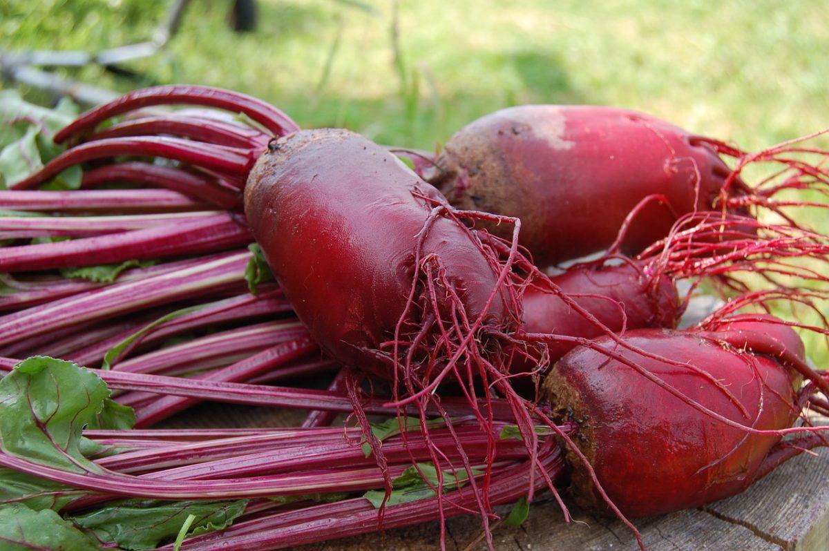 Pěstování zeleniny, které by vám záviděly i vaše babičky
