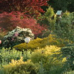 Napravte 10 největších zahradnických chyb a užijte si krásnější, útulnější a zdravější zahradu